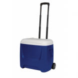 ICE BOX WITH ROLLS 26 L (47 x 34 x 41 cm)